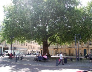 Al fresco dining plan for Kingsmead Square unveiled