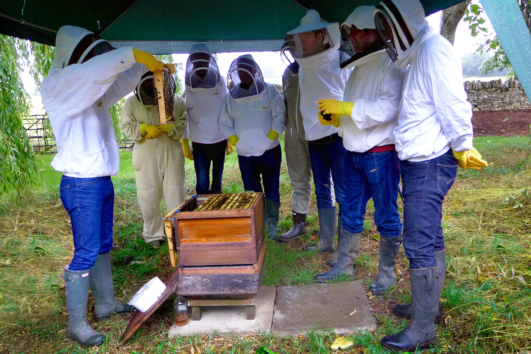 Hotel looks to create a buzz with its corporate beekeeping days